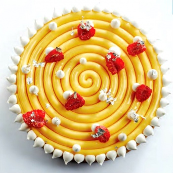 Pavoni Silicone Spiral Top Decoration Molds for Entremets - IPNOSI - Ø 160 x 10 mm - Vol: 185 ml