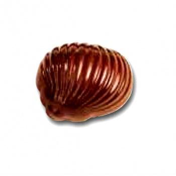 Polycarbonate Chocolate Mold Snail Praline Mold - 33x27x20 mm - 5x7 pc - 12 gr - 275x175mm