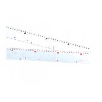 Graduated Plastic Ruler 60 cm