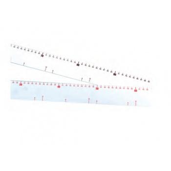 Graduated Plastic Ruler 60 cm