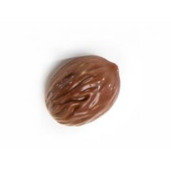 Polycarbonate Chocolate Praline Mold - NOCE WALNUT - 37x29x17.5mm - 11gr - 18 indents