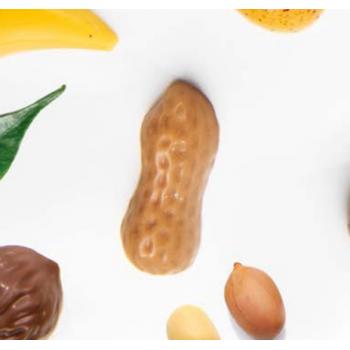 Polycarbonate Chocolate Praline Mold - ARACHIDE PEANUT - 50x23x15.5mm - 11gr - 20 indents