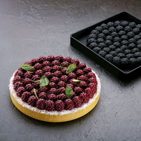 Pavoni Silicone Top Decoration Molds for Entremets - RAVEN - By Stefano Laghi & Sebastiano Caridi