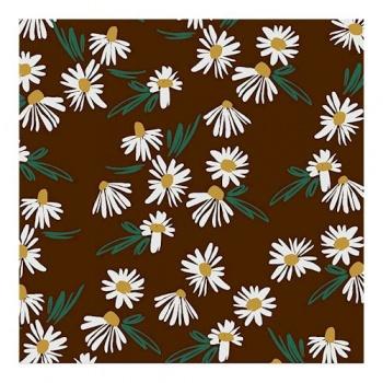 Chocolate Transfer Sheets - DAISIES - 300x400 mm - 20 sheets