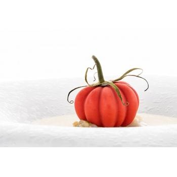 Silikomart Professional Pomodoro 24 Tomatoes Mold - Inspiration by Chef Andrea Valentinetti